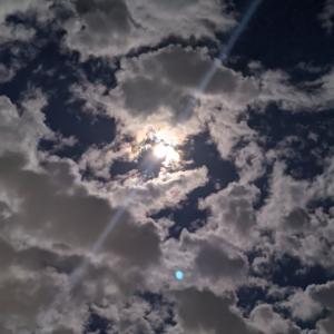 昨日はお月見