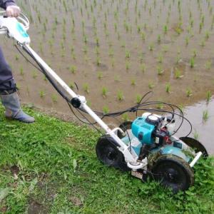 自走式草刈り機で楽に草刈り