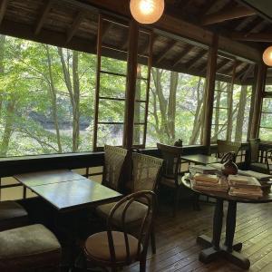 森に囲まれた癒しのカフェ ふりこ茶房