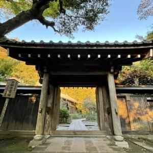 秋の円覚寺と漱石の小説