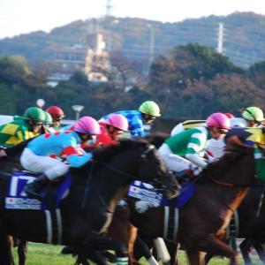 福島牝馬ステークス スクリーニング ~データから消し馬を探す~
