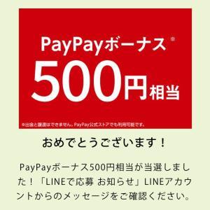 フィーバーの日!?500円×2 1000円分当選(*Ü*)