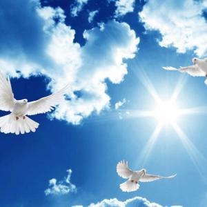 世界平和のために何ができるか?~トランプ氏、安倍晋三氏のメッセージ~