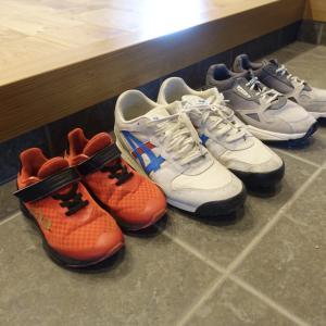 靴洗いの新習慣。これなら続く!ROSY LILYの泡シャンプー