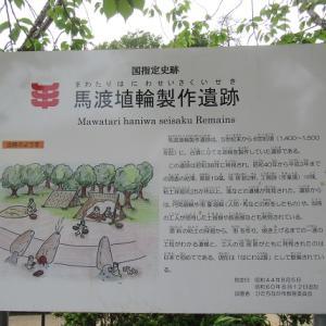 馬渡はにわ公園花しょうぶ園