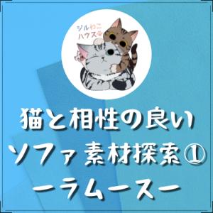 猫と相性の良いソファ素材探索① ーラムースー