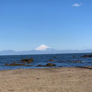 オススメ 三浦半島 無料 オートキャンプ場 和田長浜海岸
