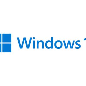 【Windows11】Bootcamp上のWindows10をWindow11にアップデートしようとしたらTPM2.0で問題があった