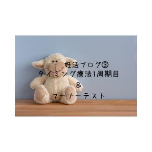 妊活ブログ③タイミング療法1周期目&フーナーテスト~本格的な不妊治療のスタート~