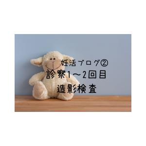 妊活ブログ②徐クリニック診察1回目~診察2回目【子宮鏡・選択的卵管造影検査】