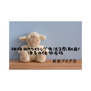 妊活ブログ⑦~神頼みのタイミング療法3周期目!決意の体外受精~