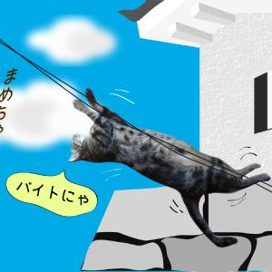 猫旅・太秦映画村