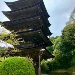 東京スカイツリーの出発点 瑠璃光寺五重塔