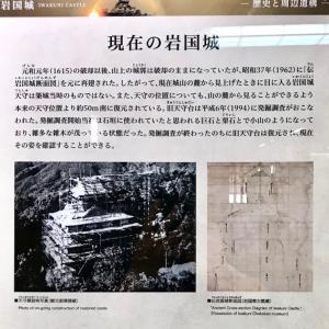 初代岩国領主吉川広家によって築城され、後に再建された「岩国城」はとても景観のよい場所です