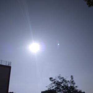 朝の新パワーアイテム おイモ(⊃=͟͟͞͞🍠=͟͟͞͞🍠^o^)⊃=͟͟͞͞🍠=͟͟͞͞🍠=͟͟͞͞🍠=͟͟͞͞🍠