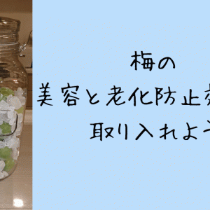 40代50代におすすめ!美容と老化防止の梅ジュース 簡単な作り方