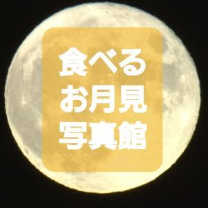 お月見写真館!2021年の中秋の名月を見逃した方へ