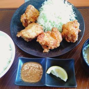 【レビュー】唐揚げ専門店「から好し」に行ってみた!味は美味しいのか!?