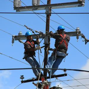 敷地上空の電線も越境物の対象です