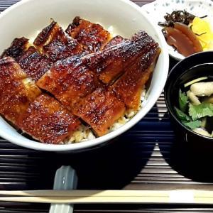 【名古屋市中区】うなぎ料理「澤正」