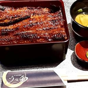 【名古屋市中村区】うなぎ料理「うな和・名駅」