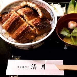 【名古屋市東区】炭火焼き鰻「清月」