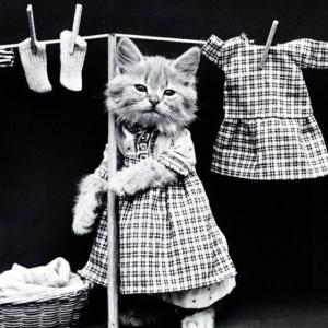 我が家の旦那だけ?あるある〜洗濯編〜