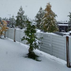 え、雪ですか??!