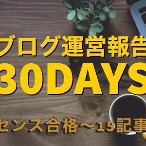 【ブログ運営報告】アドセンス合格~15記事迄のPV・収益状況