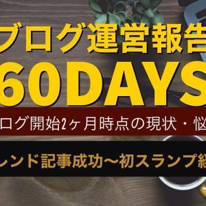 【ブログ運営報告】ブログ2カ月目の現状・悩み・PV状況