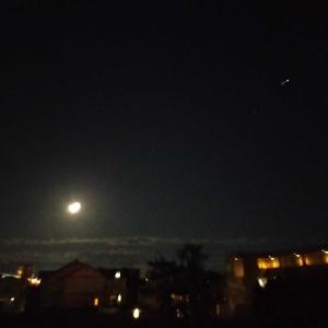 中秋の名月と満月が重なった年