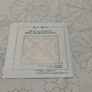 菊づくしPart①