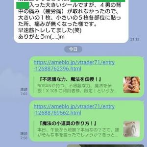沖縄空手の師範との戦い!
