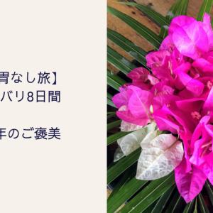 【胃なし旅】台湾・バリ8日間 術後5年のご褒美