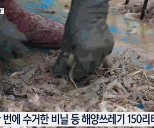 エビより多いビニール・・・ゴミを獲る漁民たち