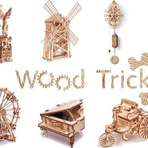 【親子でお家DIY】3Dウッドパズルを作って飾って遊ぼう!【Wood Trick】