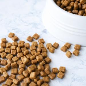 愛犬のドッグフードを無添加のものにしたい! 選び方やおすすめ商品を紹介します