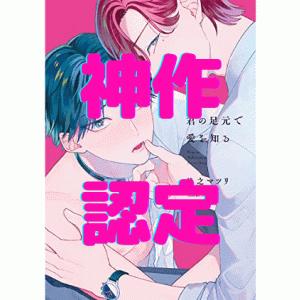 【Dom&Subの傑作!!】【最新刊】君の足元で愛を知る 後乃マツリ先生