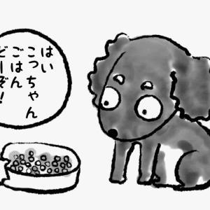 毎日のご飯は美味しく食べたい