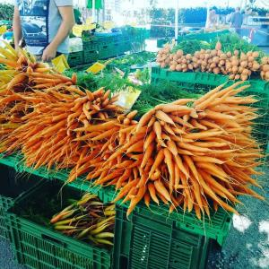 【スイス】チューリヒ市内のマーケット全6カ所で開催、生花にラビオリが盛り沢山