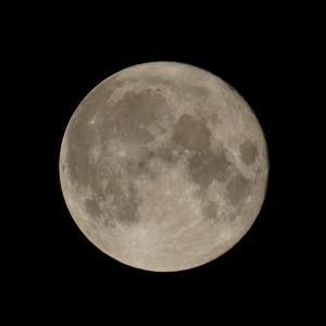【ソニー】満月が綺麗だったのでα1(ILCE-1)とSEL200600Gで撮影してみた