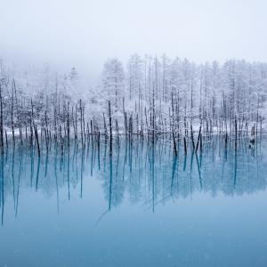 なごり雪の青い池【5月3日撮影】