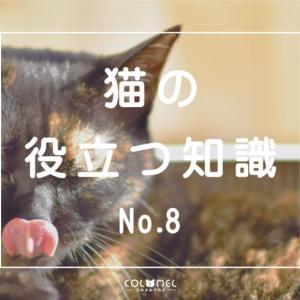 【まとめ】猫の役立つ知識8