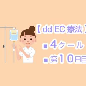 【 dd EC療法 】4クール10日目 ☆ 歯医者さんとの関係