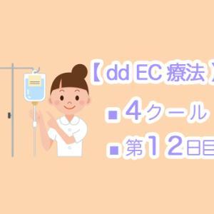 【 dd EC療法 】4クール12日目 ☆ 乳がんサバイバーのQOL