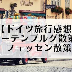 【ドイツ旅行感想】ローテンブルグ散策&フュッセン散策