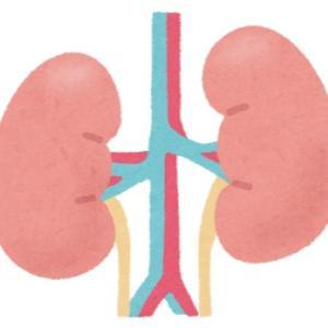 腎臓が悪くなった原因は糖尿病なのかそれとも、、