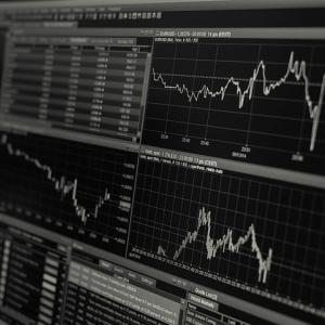 アメリカ株の成長株(グロース株)を探してみる(2021年5月)