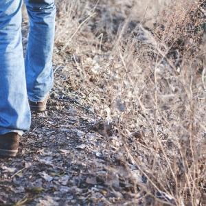 はじめてのウォーキング。思ったより歩けずショック。
