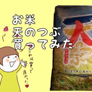 楽天で福島のお米「天のつぶ」買ってみた!